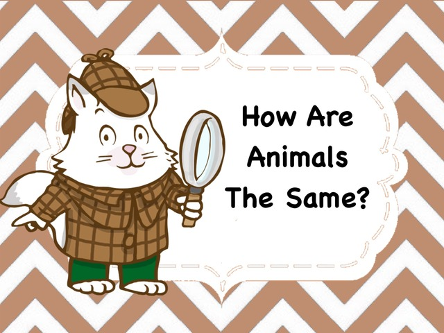 How Are Animals The Same by Ellen Weber