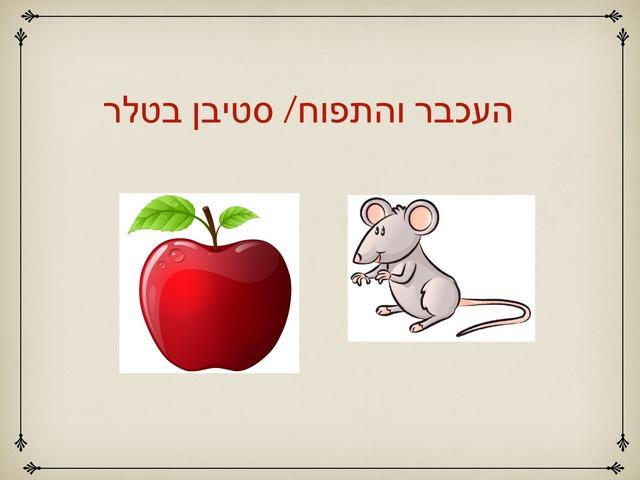 העכבר והתפוח by Yael Admoni