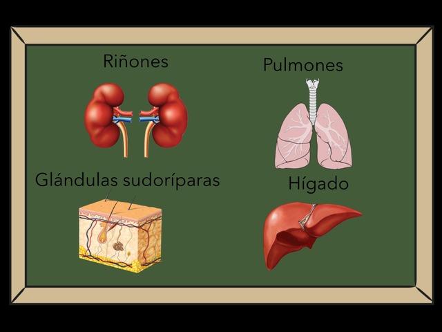 Bio by Pablo