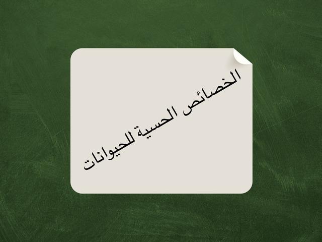 الخصائص الحسية للحيوانات by Noura Abdulaziz Al-amr