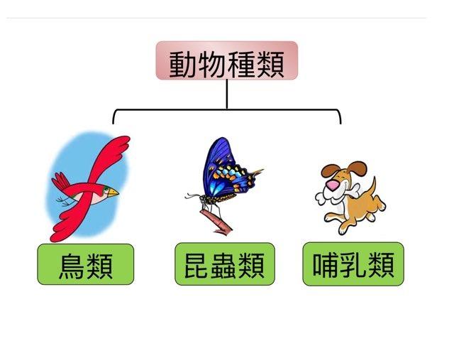 初小二789 by Li Kayan