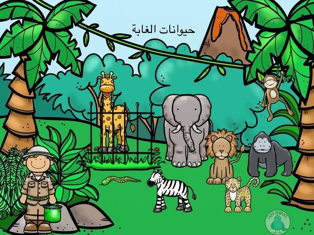 حيوانات الغابة by Momi M