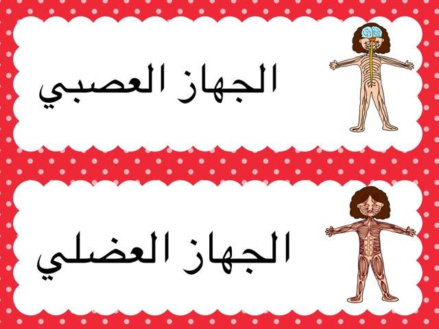 اجهزة الجسم by Sarah Alali