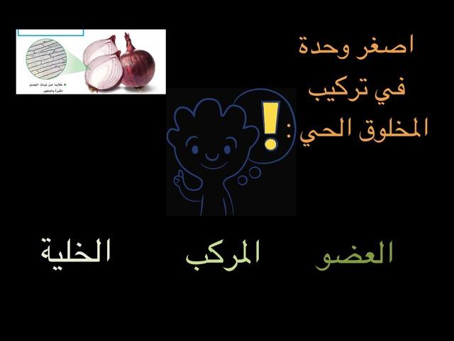 مادة العلوم الصف السادس by علي الزهراني