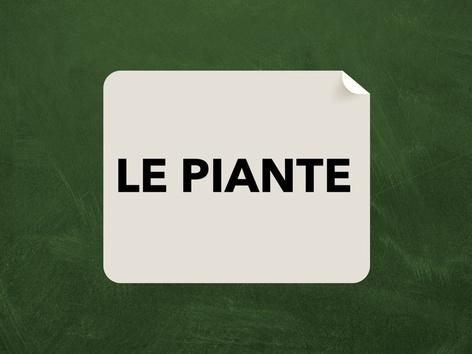 LE PIANTE by Veronica Zonta