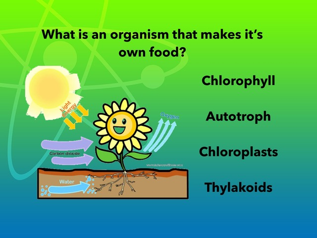 General biology photosynthesis by Vivian Janik