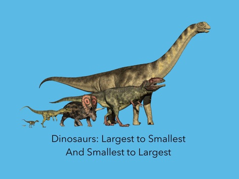 Largest To Smallest, Smallest To Largest by Carol Smith