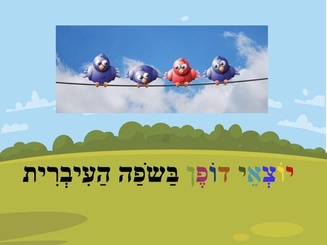 יוצאי דופן בשפה העברית by karina lvovsky