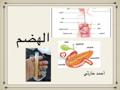 الجهاز الهضمي by احمد كريري