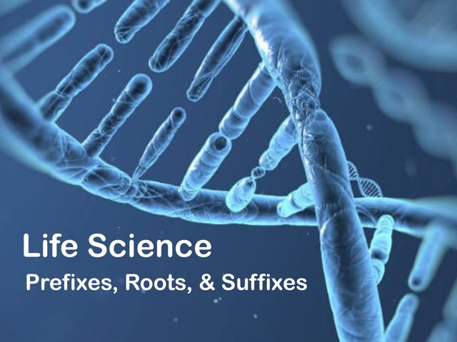 Life Science: Prefixes, Roots, & Suffixes by Maleah Stewart
