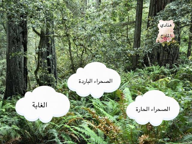 الغابة علوم ثاني   by شموخ الروح