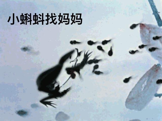 课文1《小蝌蚪找妈妈》 by Zoe Zou