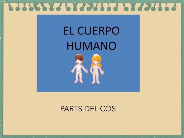 Parts Del Cos by Escola nadis-scs