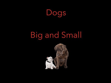 Dogs-Big and Small by Lisa Masterson