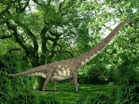 Cool  Dinosaurs  by Joel
