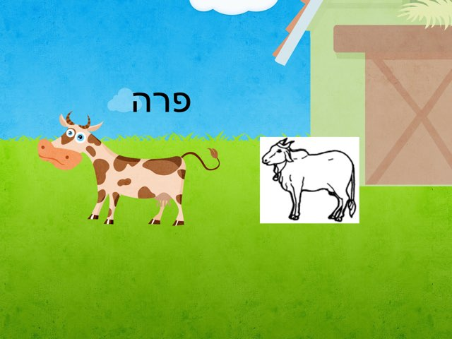 לדוד משה by sandra Sandra