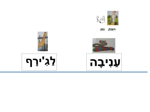 התאמת מילה לסמל by keshatot keshatot