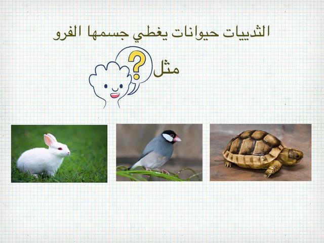 علوم الصف الاول الوحدة الثانية الفصل الاول by علي الزهراني