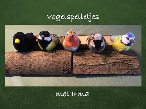 Vogelspelletje by Nelleke Lürsen