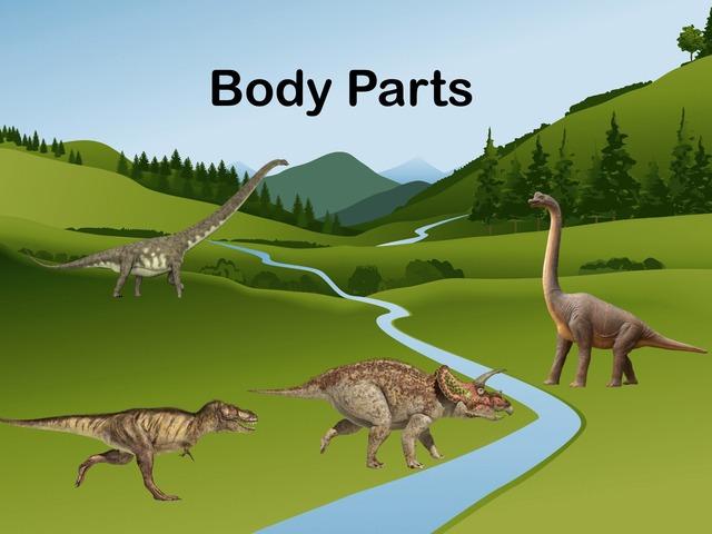 Body Parts by Jose Sanchez Ureña