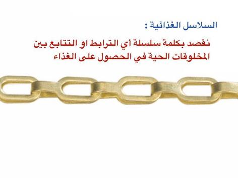 الصف الثاني علوم السلاسل الغذائية by علي الزهراني
