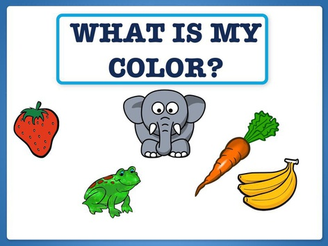 What Is My Color? by Hadi  Oyna