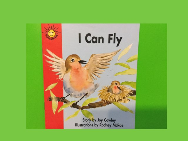 I Can Fly by Patti Triplett