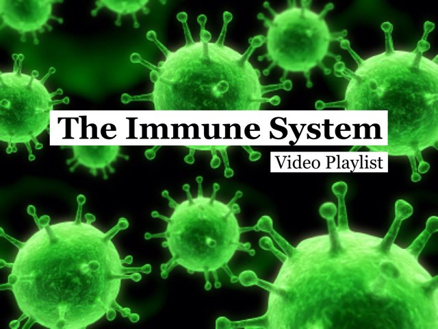 The Immune System - Minute Earth by Earth Science Videos
