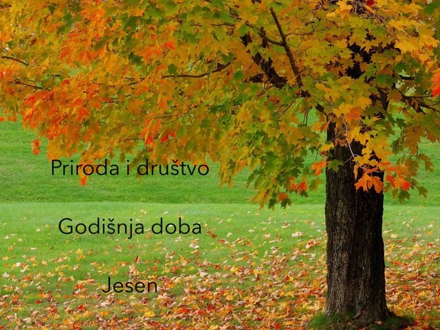 1.r Jesen by natasa delac