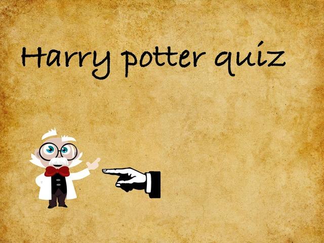 Harry Potter by Feline Van de water