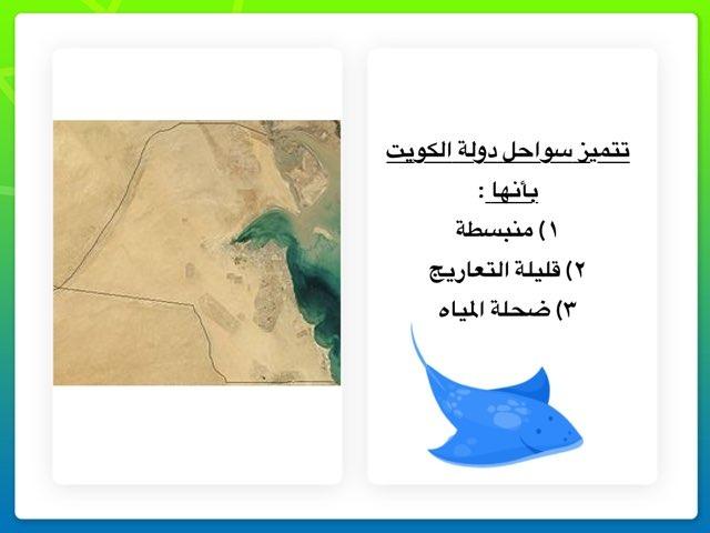تضاريس سواحل بلادي ( المعلمة : اروى الصليلي) by Arwa Nwaf