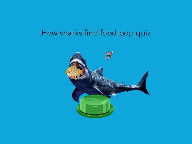 How Sharks Find Food Pop Quiz. by Jane Miller _ Staff - FuquayVarinaE