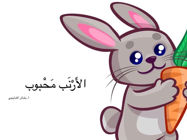 حكاية الأرنب محبوب by shoreya store