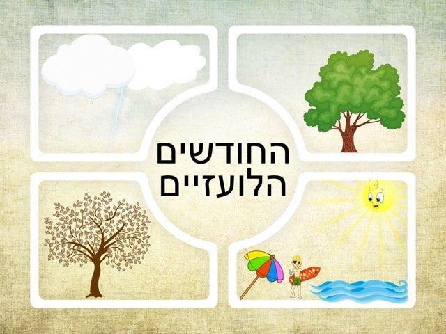 החודשים הלועזיים by Mazen Dibse