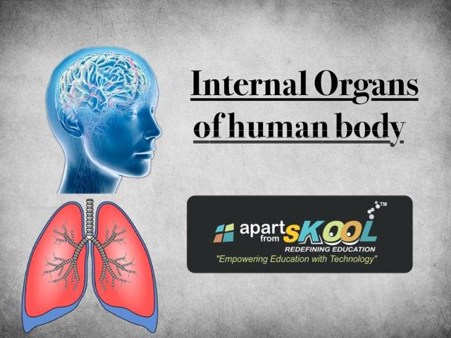 Internal Organs Of Human Body by TinyTap creator