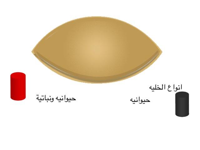 الاحياء by Ruba Bogari