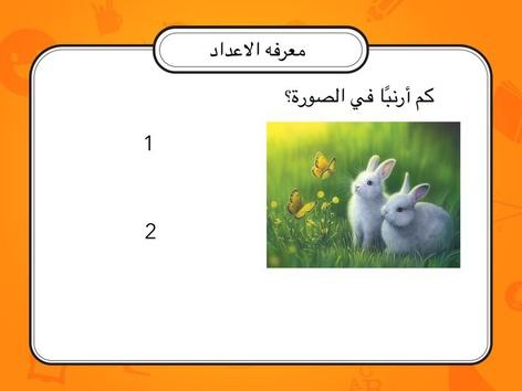 הכרת מספרים by יסמין קאסם