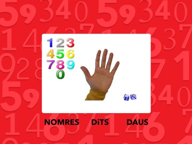 Nombres, Dits I Daus by Escola Joan23