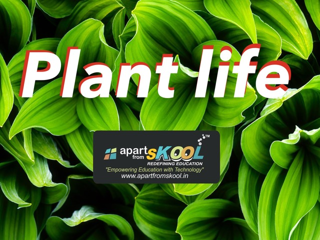 Plant Life by TinyTap creator