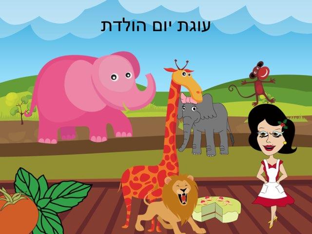 החיות ועוגת יום ההולדת by sharon margolin