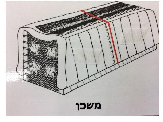 פרשת  תרומה שלב למידה בית מצודות by Eliezer Adler