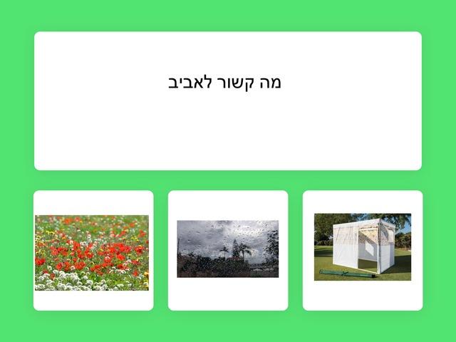 אביב מיכל פרימור by Miki Primor