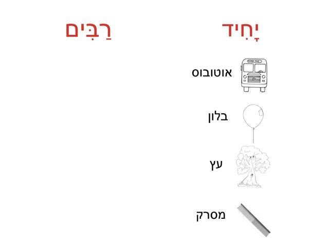 יחיד רבים כתיבה by צפנת הלוי