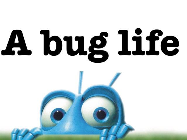 A Bug Life  by Wilma Coradyn