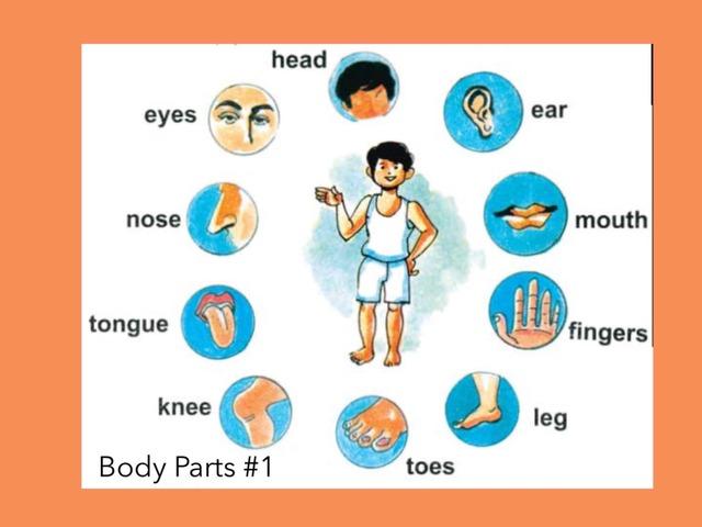 Body Parts #1 by Carol Smith