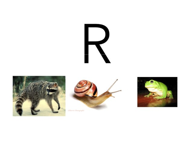 Tap on the animal that starts with an R by Khoua Vang