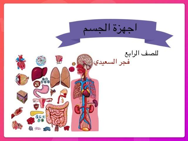 مراجعة اجهزه الجسم  by Fajer Alsaeedi