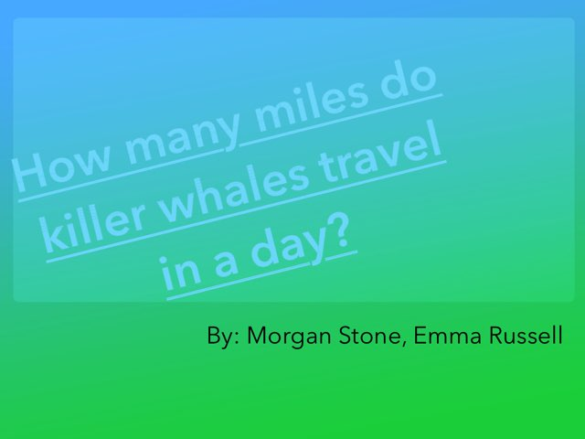 Morgan And Emma Killer Whale Project by Jane Miller _ Staff - FuquayVarinaE