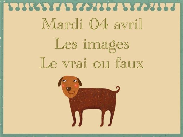 A - Mar04 - Images Et Vrai Faux  by Caroline Gozdek