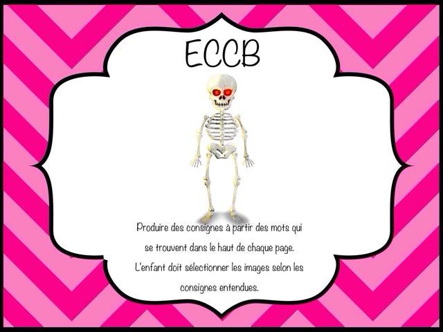Eccb 2 by Marie-Claude GR